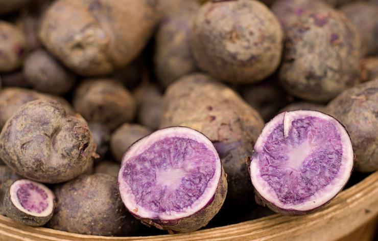 blue or purple potatoes