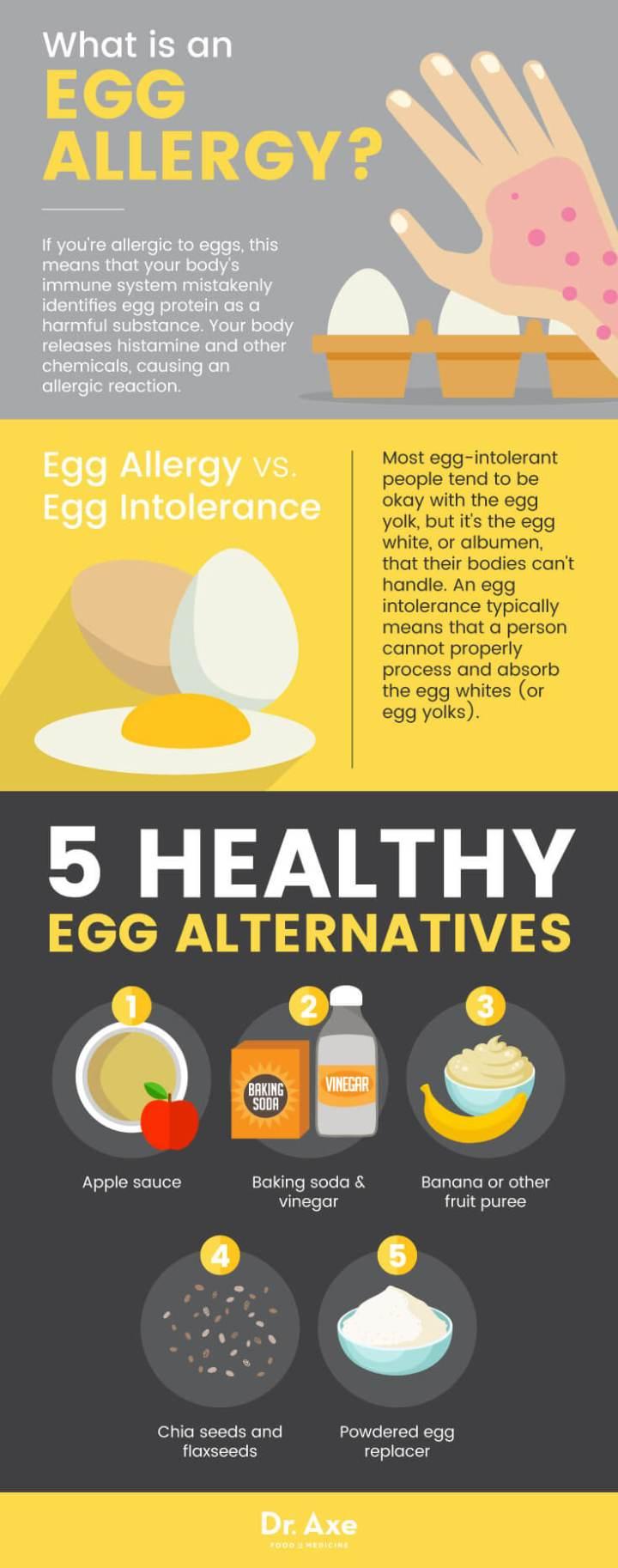 Egg allergy & egg alternatives