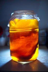 kombucha tea drink
