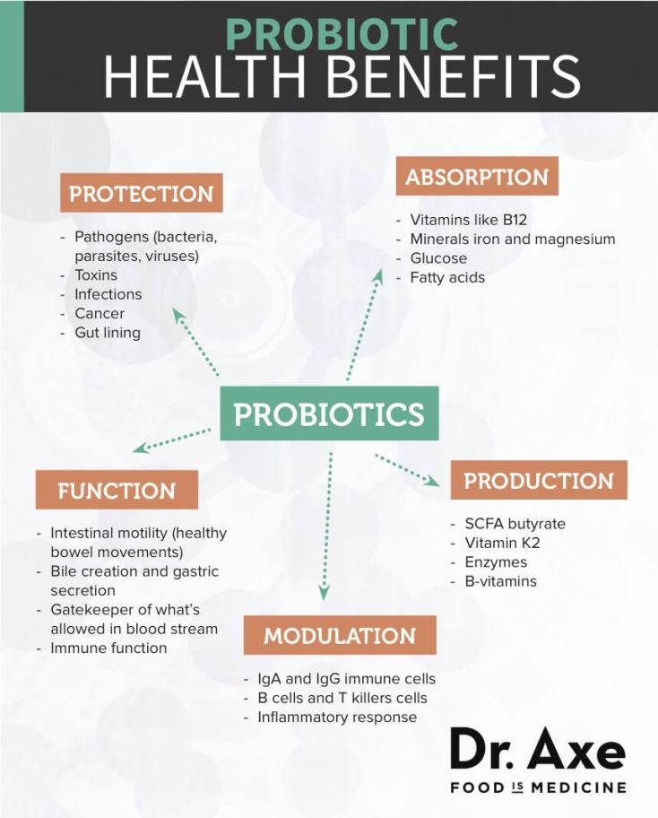 Probiotic Health Benefits Diagram