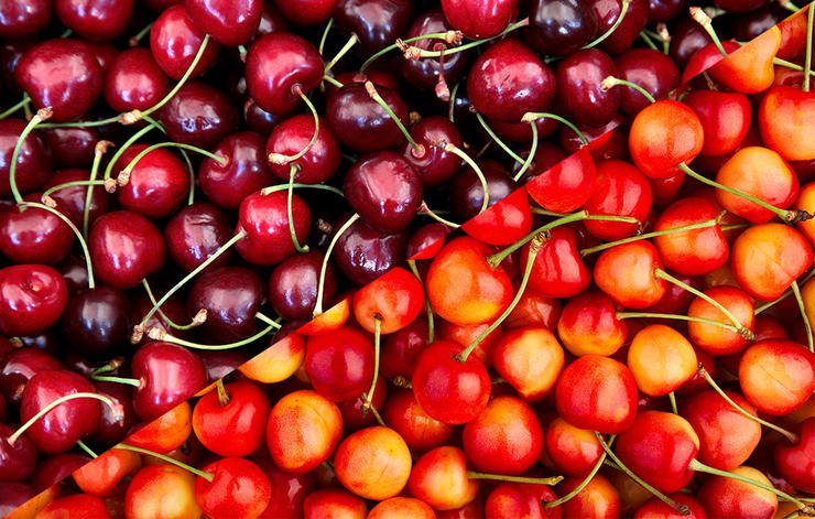 Types of cherries