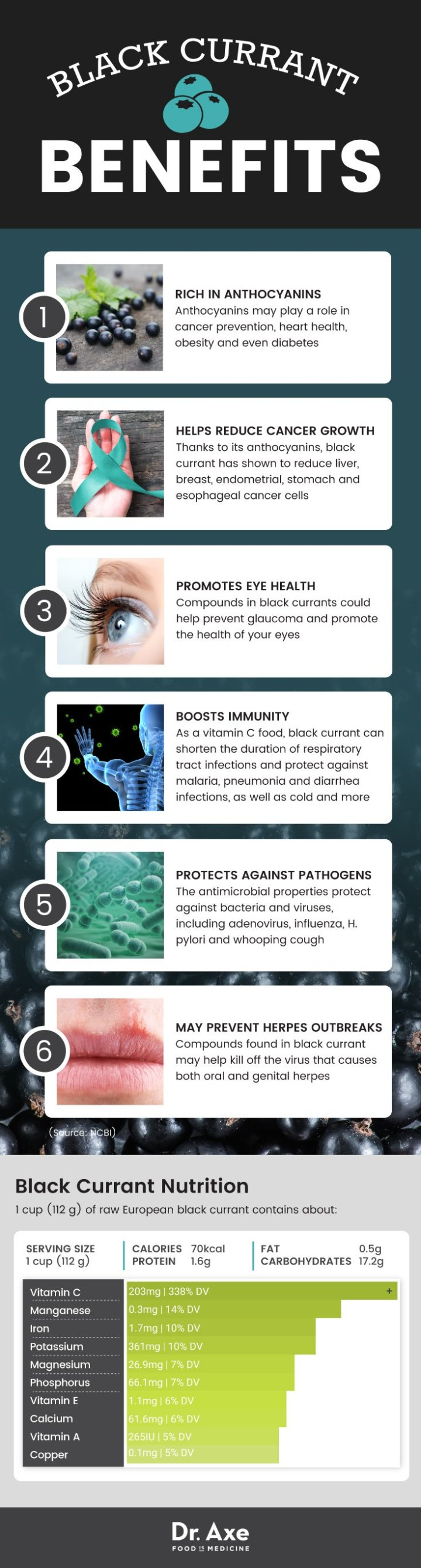 Black currant benefits - Dr. Axe